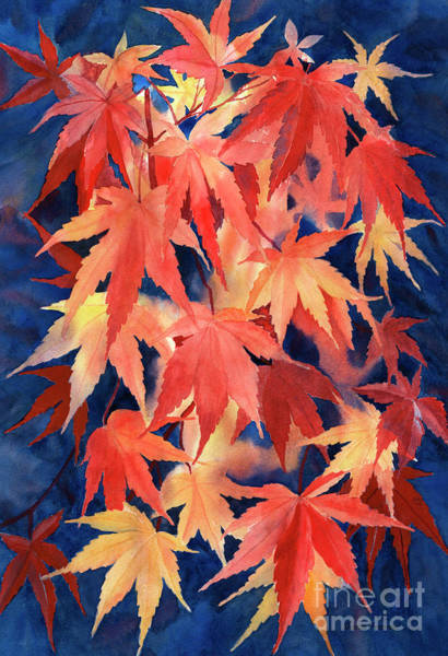 Wall Art - Painting - Red And Blue Maple Leaf Design by Sharon Freeman