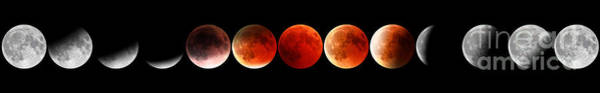 Photograph - Red Moon Phases by Benny Marty
