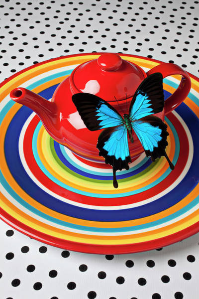 Teapot Photograph - Red Teapot With Blue Butterfly by Garry Gay