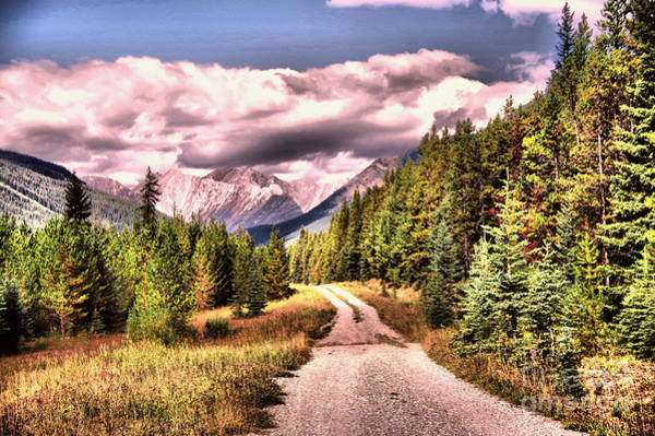 Wall Art - Photograph - A Road To The Mountain  by Jeff Swan