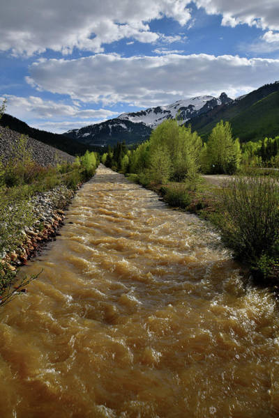 Photograph - Roadside Creek Near Red Mountain Pass by Ray Mathis