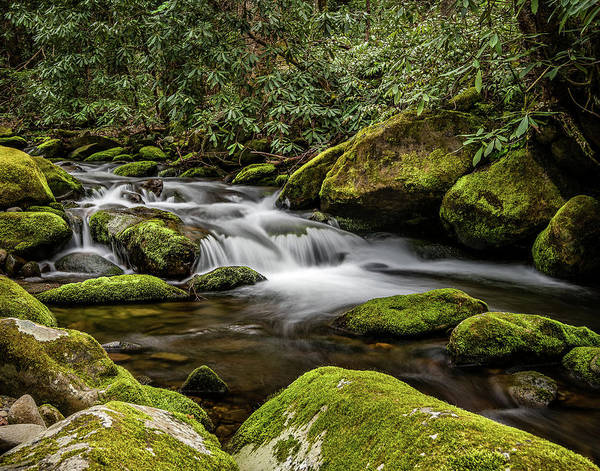 Photograph - Roaring Fork by William Christiansen