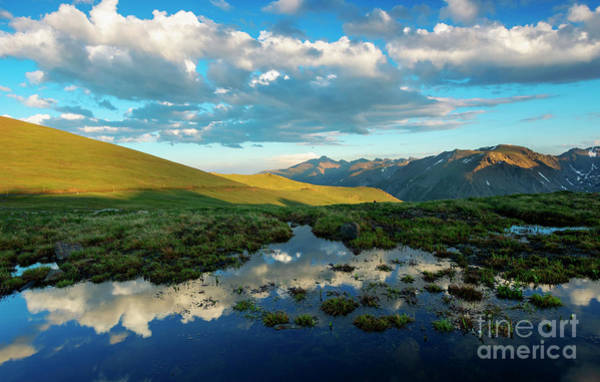 Wall Art - Photograph - Rocky Mountain Reflections by Mike Dawson