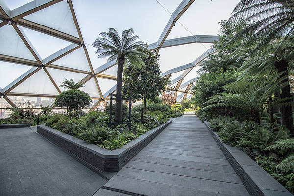 Roof Top Photograph - Roof Gardens by Martin Newman
