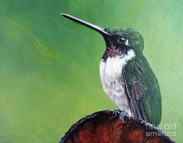 Painting - Ruby Throated Hummingbird by Lizi Beard-Ward