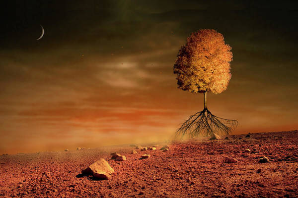 Digital Art - Running Tree by Marc Ward