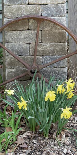 Photograph - Rustic Garden Spot by Ann Horn