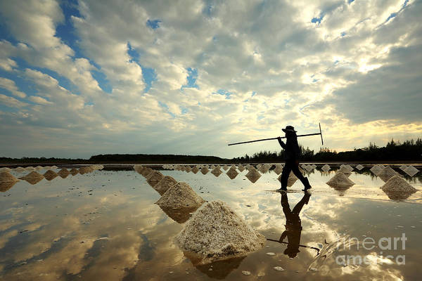 Wall Art - Photograph - Salt Farm In Eastern, Thailand by Isarescheewin