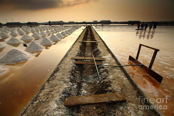 Pile Wall Art - Photograph - Salt Fields, Phetchaburi, Thailand by Isarescheewin