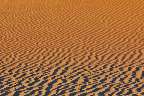 Wall Art - Photograph - Sand Ripple Patterns In The Desert by Darrell Gulin