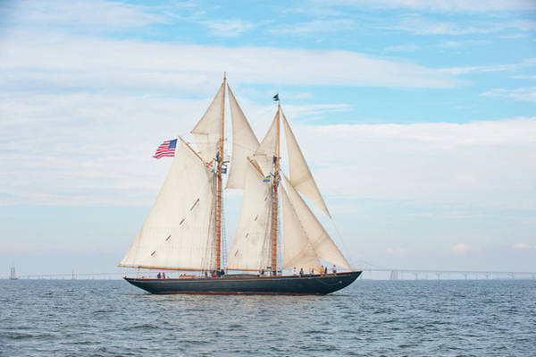 Photograph - Schooner Virginia by Mark Duehmig