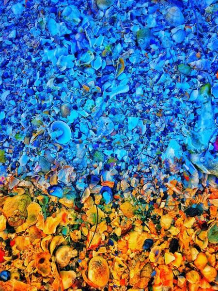 Wall Art - Photograph - Seashell Abstract by Jerry Abbott