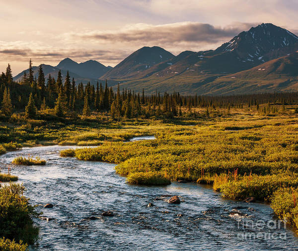 Wall Art - Photograph - Serenity Lake In Tundra On Alaska by Galyna Andrushko