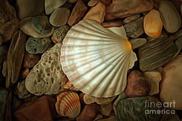 Wall Art - Digital Art - Shell On Sea Pebble Stones by Michal Boubin