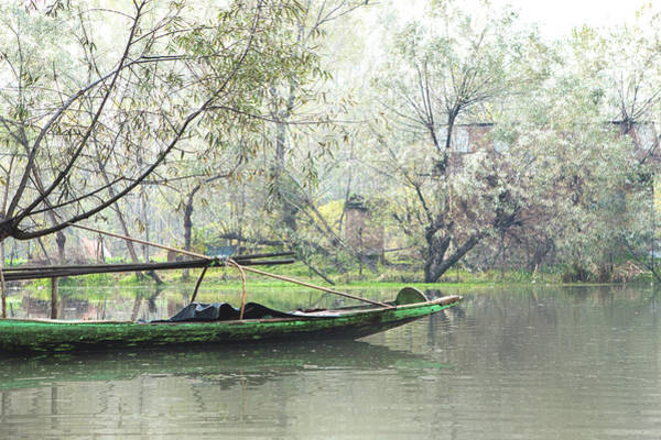 Dal Lake Photograph - Winter Morning Shikara Boat Ride In Dal Lake by Chantelle Flores