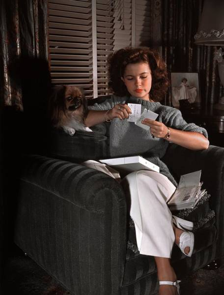 Topix Photograph - Shirley Temple At Home by Earl Theisen Collection