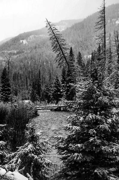 Wall Art - Photograph - Shoshone River In Black And White by Dwight Eddington