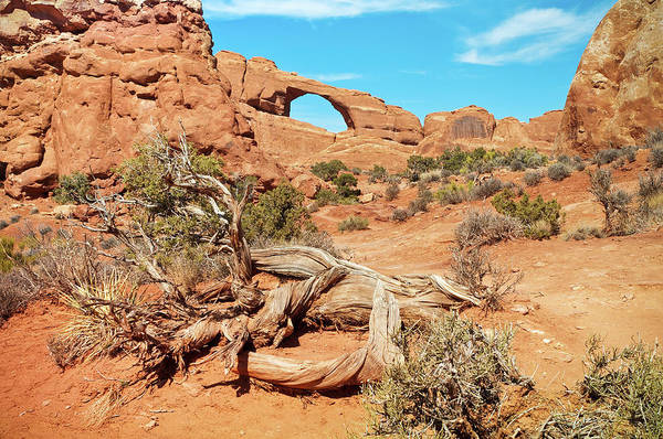 Plateau Wall Art - Photograph - Skyline Arch, Arches National Park by Fotomonkee