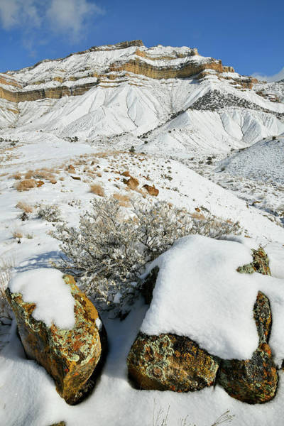Photograph - Snow Covered Boulders Beneath The Book Cliffs by Ray Mathis
