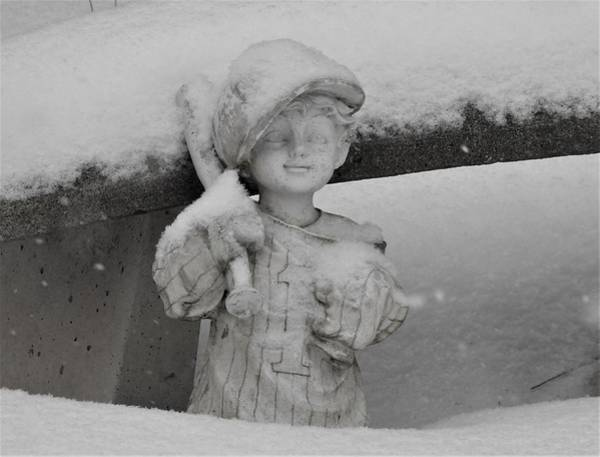 Wall Art - Photograph - Snow Day by Betty-Anne McDonald