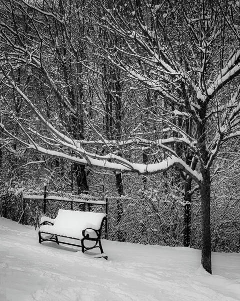Photograph - Snow Day by Lora J Wilson