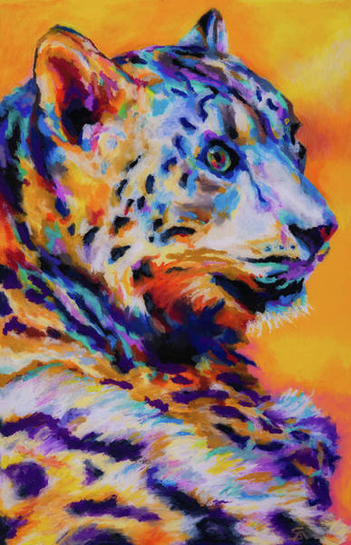 Wall Art - Photograph - Snow Leopard by Stephen Anderson