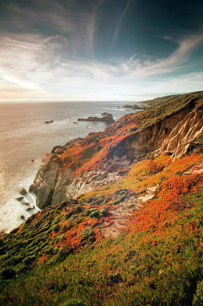 Big Sur Photograph - Soberanes, Big Sur, California by Doug Steakley