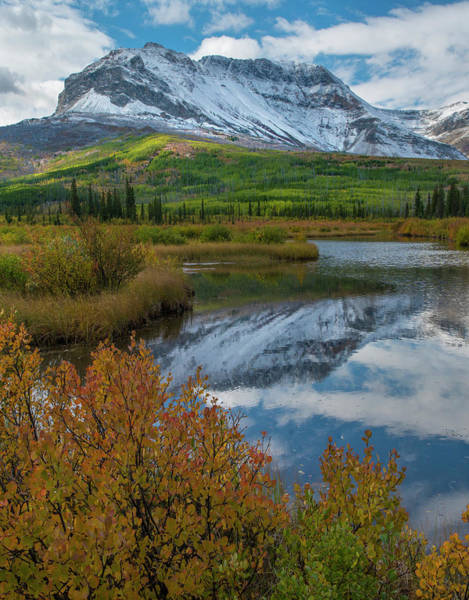 Photograph - Sofa Mountain, Waterton Lakes National by