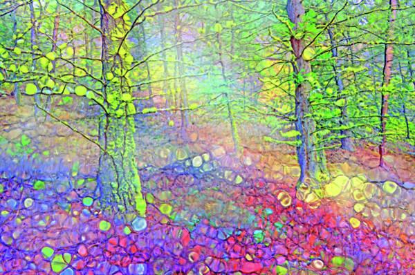 Digital Art - Solitude by Tara Turner