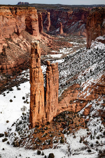 Photograph - Spider Rock by William Christiansen