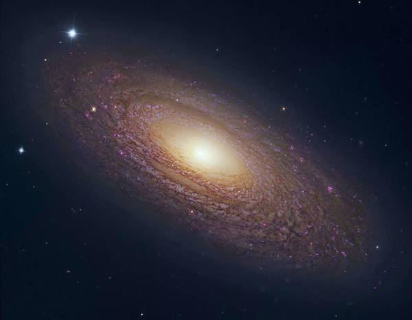 Wall Art - Painting - Spiral Galaxy Ngc 2841 4 by Celestial Images