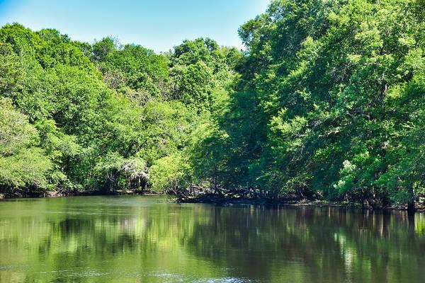 Wall Art - Photograph - Spring Green River by Linda Brown