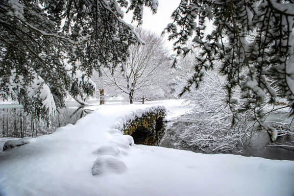 Photograph - Spring Grove In The Snow by Ed Taylor