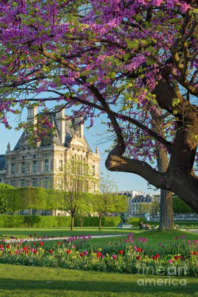 Photograph - Springtime In Paris by Brian Jannsen