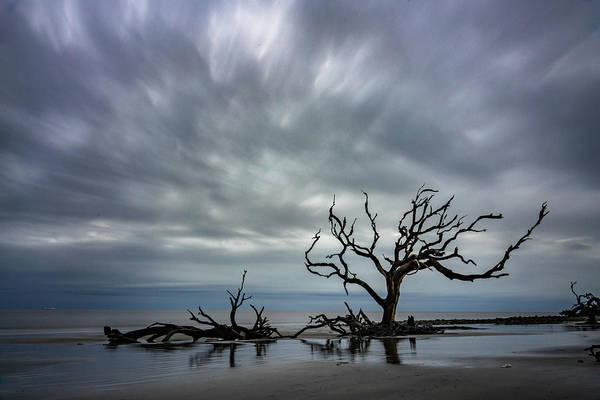 Photograph - Standing by Joye Ardyn Durham