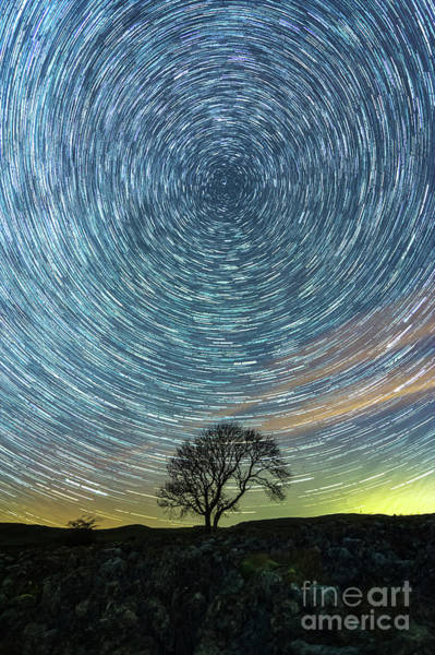 Photograph - Star Trails At The Lonely Tree On The Limestone Pavement by Mariusz Talarek