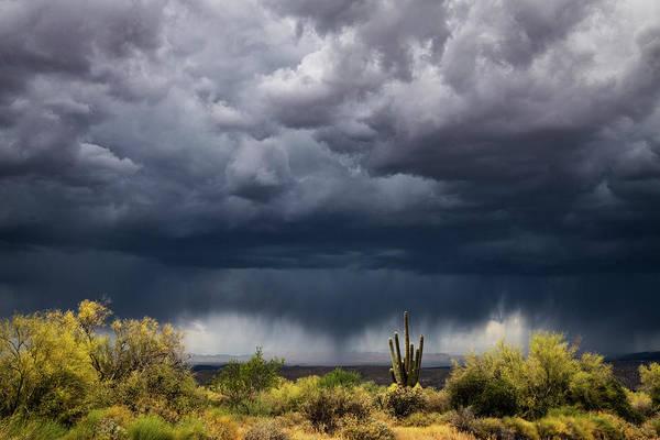 Wall Art - Photograph - Stormy Arizona Skies  by Saija Lehtonen