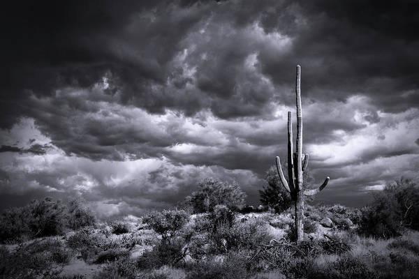 Wall Art - Photograph - Stormy Desert Skies In Black And White  by Saija Lehtonen