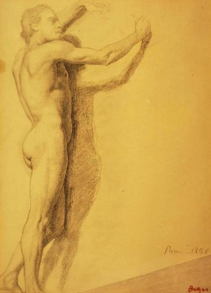 Wall Art - Drawing - Study Of A Male Nude by Edgar Degas