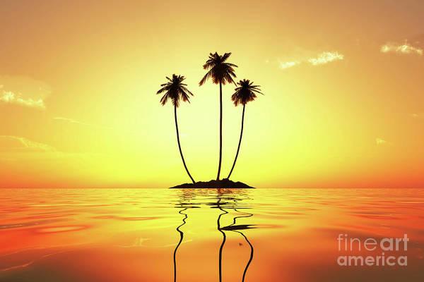 Wall Art - Photograph - Sun In Palms by Aleksey Tugolukov