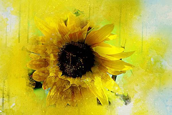 Wall Art - Painting - Sunflower by ArtMarketJapan