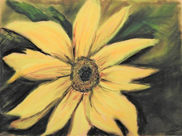 Wall Art - Pastel - Sunflower by Betty-Anne McDonald