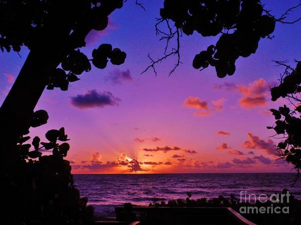 Wall Art - Photograph - Sunrise Boynton Beach by Snapshot Studio