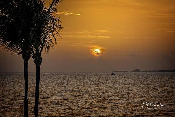 Photograph - Sunrise by David Pine