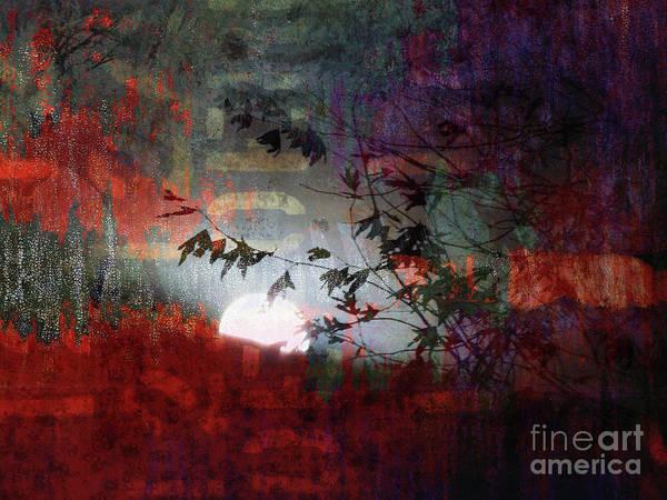 Wall Art - Photograph - Sunrise by Robert Ball