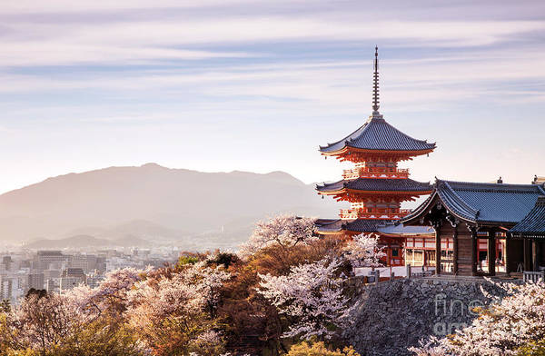 Kansai Wall Art - Photograph - Sunset At Kiyomizu-dera Temple And by Thipjang