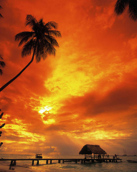 Tobago Wall Art - Photograph - Sunset At Pigeon Point, Tobago by Terry Why
