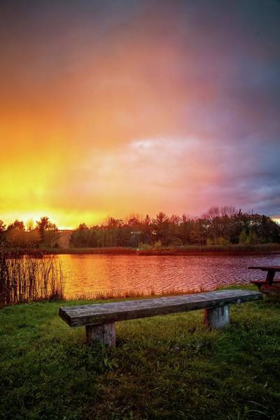 Photograph - Sunset At The Pond by Lynn Bauer