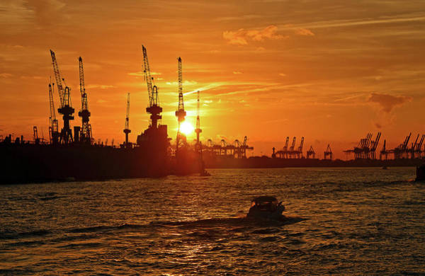 Wall Art - Photograph - Sunset Silhouette Hamburg Harbour With Harbour Cranes Hamburg Germany by imageBROKER - Ingeborg Knol