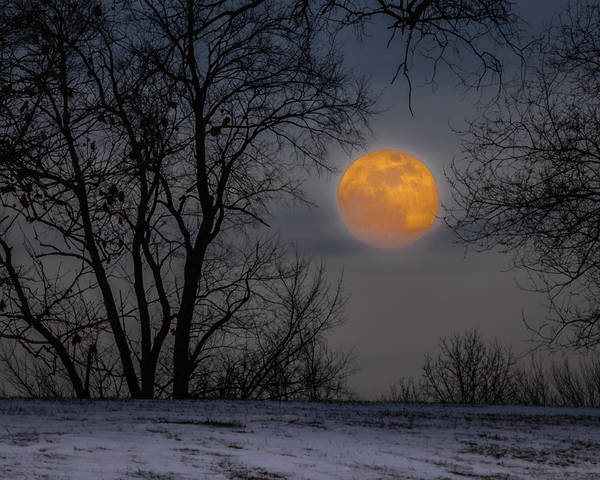 Photograph - Super Blue Moon Rising 2 by William Christiansen